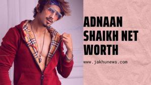 Adnaan Shaikh Net Worth