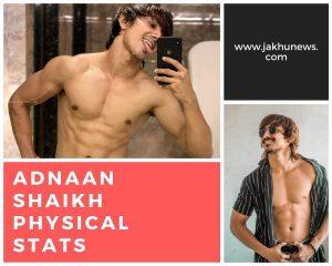 Adnaan Shaikh Physical Stats