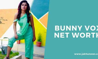 Bunny Vox Net Worth