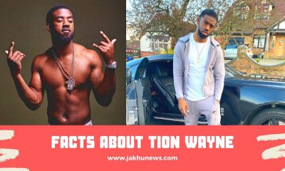 Facts About Tion Wayne
