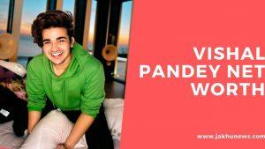Vishal Pandey Net Worth