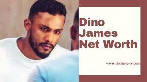 Dino James Net Worth